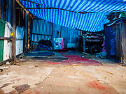 21 MARCH 2017 - BANGKOK, THAILAND: What used to be an area for fighting cocks in Pom Mahakan. The birds, and their owners, were evicted in early March. The final evictions of the remaining families in Pom Mahakan, a slum community in a 19th century fort in Bangkok, have started. City officials are moving the residents out of the fort. NGOs and historic preservation organizations protested the city's action but city officials did not relent and started evicting the remaining families in early March.               PHOTO BY JACK KURTZ