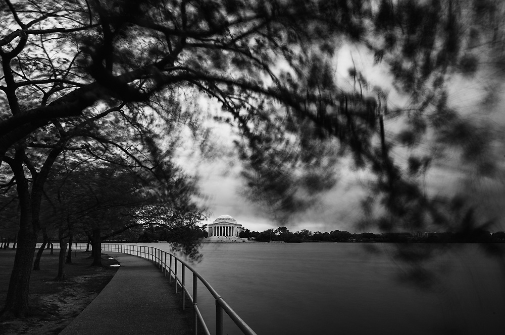 The Jefferson Memorial looms in the background of the swaying trees of Tidal Basin on a windy day in Washington, D.C.