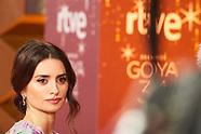 012520 34th Goya Cinema Awards 2020 - Red Carpet