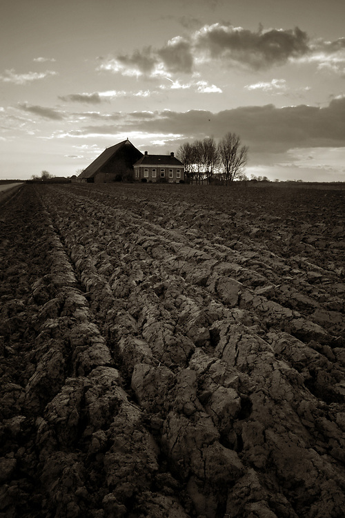 Plowed farm land near Schaphalsterzijl, Groningen province // Een omgeploegde akker voor een boerderij nabij Schaphalsterzijl.