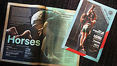 horses | pers&print&promo