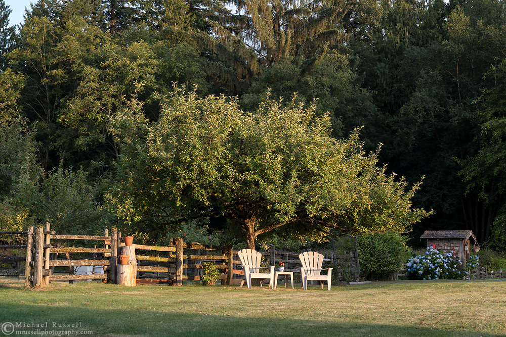 Two chairs under an Apple tree in the gardens surrounding the Annand/Rowlatt Farmhouse.  The farmhouse on the Annand/Rowlatt farmstead was built in 1888.  Joseph and Sarah Anne Annand sold the farm in 1905, and Len Rowlatt first leased, then purchased the property and lived there for almost 60 years.  The farmhouse and surrounding buildings are now part of Campbell Valley Regional Park in Langley, British Columbia, Canada.