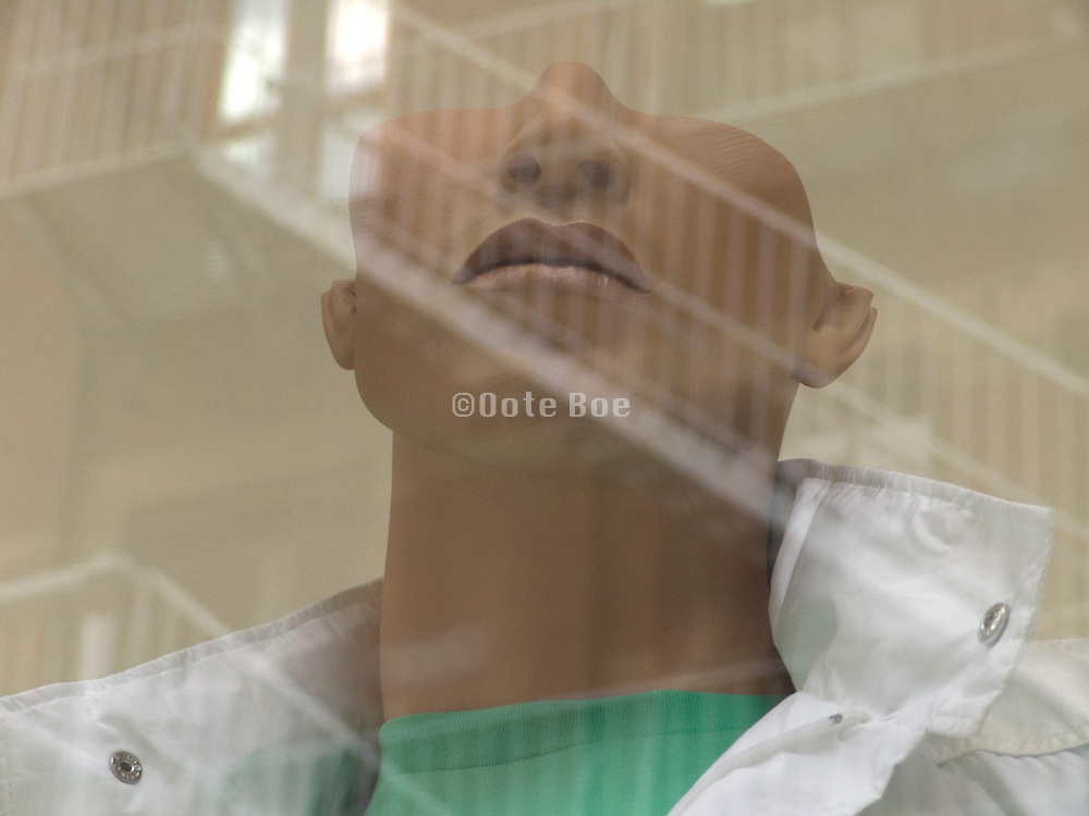 a mannequin with half head design displayed in a window