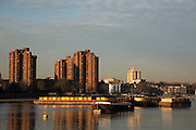 Winter light along the River Thames path on the South side at Battersea looking towards Chelsea in London, England, United Kingdom.