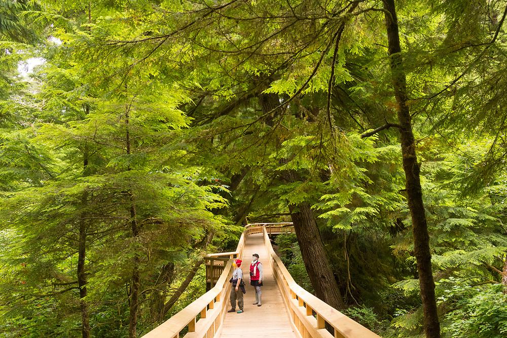 The boardwalk trail at the Old Growth Cedar Wetlands Preserve in Rockaway Beach Oregon on the Oregon Coast