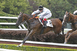 June 27, 2017 - Auteuil, France, France - Course 5 - The Stomp - David Gallon (Credit Image: © Panoramic via ZUMA Press)
