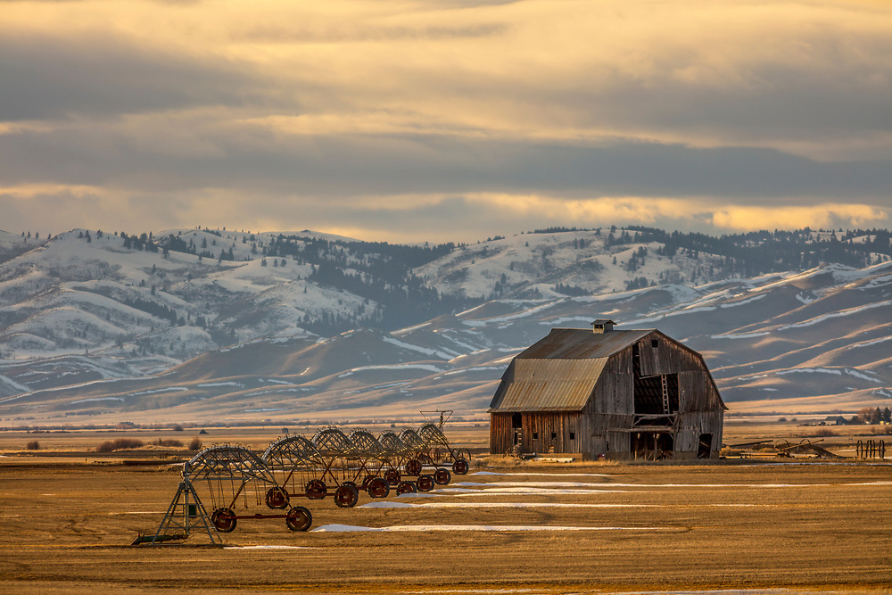 Collapsing barn holds on against the harsh elements of weather and time on the Camas Prairie in Southwest Idaho.  Licensing and Open Edition Prints.