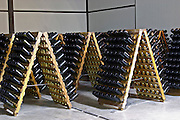 Bottles of sparkling wine aging upside down in pupitres. Bodega Del Anelo Winery, also called Finca Roja, Anelo Region, Neuquen, Patagonia, Argentina, South America