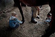 Jesse Rhodes helps his father James Rhodes shoe one of the family horses. Boys who are not old enough to attend school spend their days on the farm with their father. Old Order Mennonites are a branch of the Mennonite church. It is a term that is often used to refer to those groups of Mennonites who practice a lifestyle without some elements of modern technology.