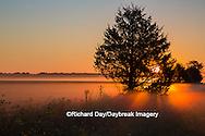 63893-02902 Sunrise at Prairie Ridge State Natural Area, Marion Co, IL