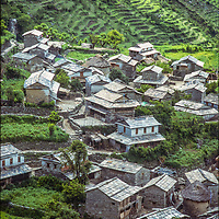 Rice paddies surround a village in the Kali Gandaki Valley, Nepal