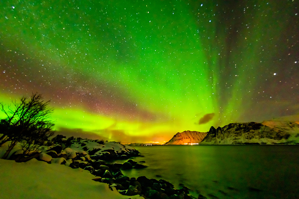 Northern Lights (Aurora Borealis), Gimsoya Island, Lofoten Islands, Arctic, Northern Norway.