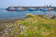 Fishing boats in coastal fishing village of Westport<br />