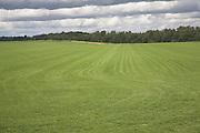 Commercial grass turf farming, Sutton, Suffolk, England