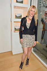 MEREDITH OSTROM at a private view of photographs by Jolyon Fenwick 'The Zero Hours Panoramas' 100 Years On: Views From The Parapet of The Somme held at Sladmore Contemporary, 32 Bruton Place, London on 30th June 2016.