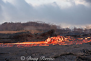 a lavaberg or lava boat (large chunk of partially hardened lava) floats down the lava river flowing through Kapoho from Fissure 8 of the Kilauea Volcano east rift zone near Pahoa, Puna District, Hawaii Island ( the Big Island ), Hawaiian Islands, U.S.A.; heat waves rising from the lava shimmer the air, distorting the view of everything beyond the edge of the river