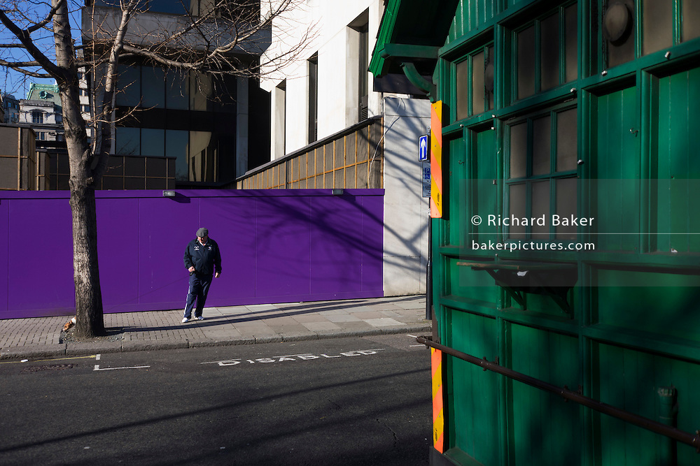 Dog stope to pee with owner looking on near purple construction hoarding and green taxi drivers' shelter.