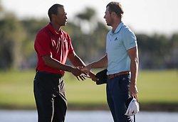 February 25, 2018 - Palm Beach Gardens, Florida, U.S. - Tiger Woods shakes hands with Sam Burns after completing the 18th hole during the final round of the 2018 Honda Classic at PGA National Resort and Spa in Palm Beach Gardens, Fla., on Sunday, February 25, 2018. (Credit Image: © Andres Leiva/The Palm Beach Post via ZUMA Wire)