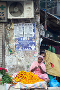A woman threads marigolds beneath a wall with political posters, New Delhi, India