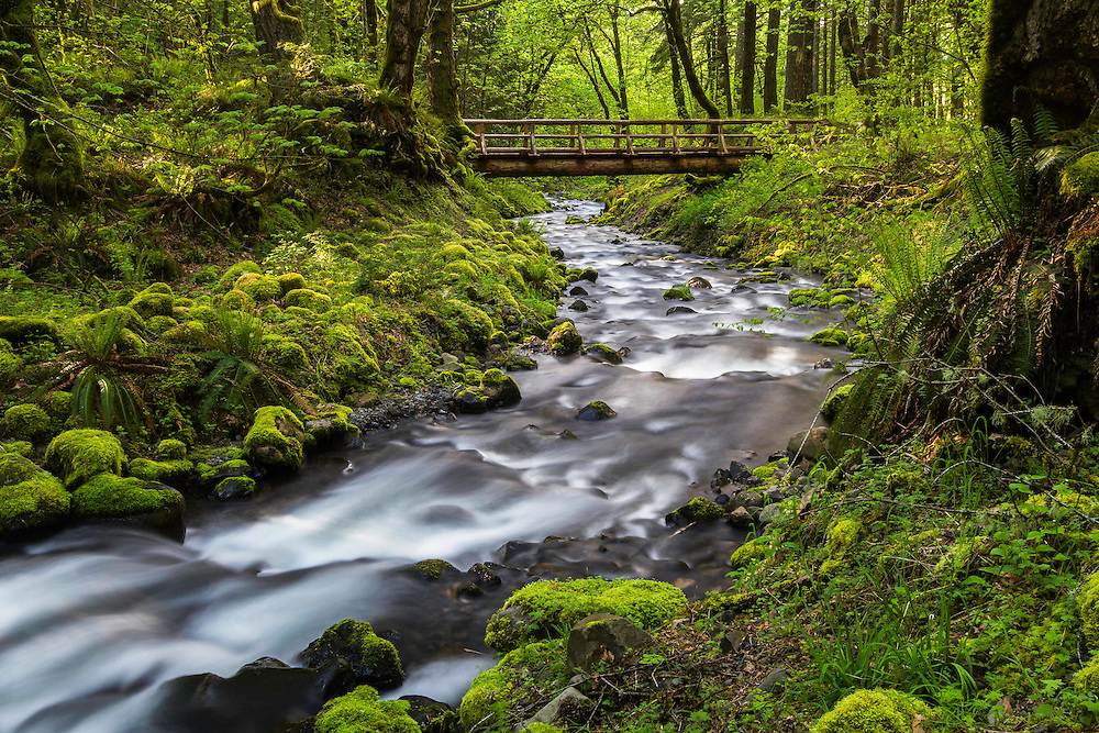 Water flows under an old bridge on Gorton Creek in the Columbia River Gorge of Oregon.