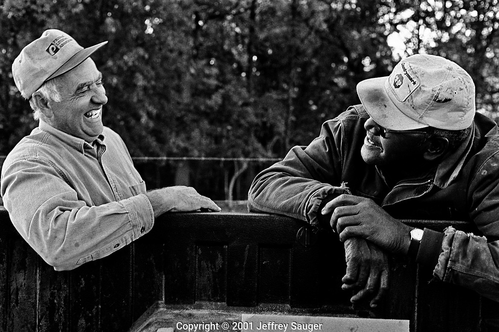 """THURMOND, OHIO - Bill Howard catches up with one of his mentors Jim Burleson at Burleson's cattle farm in Thurmond, Ohio, in May 2001. Burleson taught both of Howard's children in high school. """"That's one great guy,"""" Bill says. (Photo by Jeffrey Sauger)"""