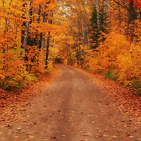 """""""Magical Autumn Mystery""""<br /> <br /> A magical winding back country road in autumn! Fall foliage at it's peak! Pure magic!!<br /> <br /> Autumn Landscapes by Rachel Cohen"""