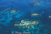 patch reefs in lagoon, Lighthouse Reef Atoll, Belize, Central America ( Caribbean Sea )