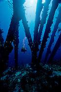 pier in Bonaire hosts diver