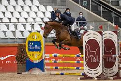 Laheyne Dieter, BEL, Riesling van't Roosakker<br /> Pavo Hengsten competitie - Oudsbergen 2021<br /> © Hippo Foto - Dirk Caremans<br />  22/02/2021