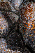 A delightful abstract, reminiscent of a gnome, nestled among highly textured and coloured rocks and lichens, with delecate light and shade.