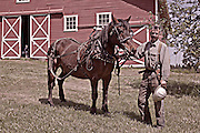 William L. Finley National Wildlife Refuge, Oregon a horse in logging gear with its owner/logger. MR, Digitally Altered