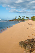 Ali'i Beach on the North Shore of Oahu.