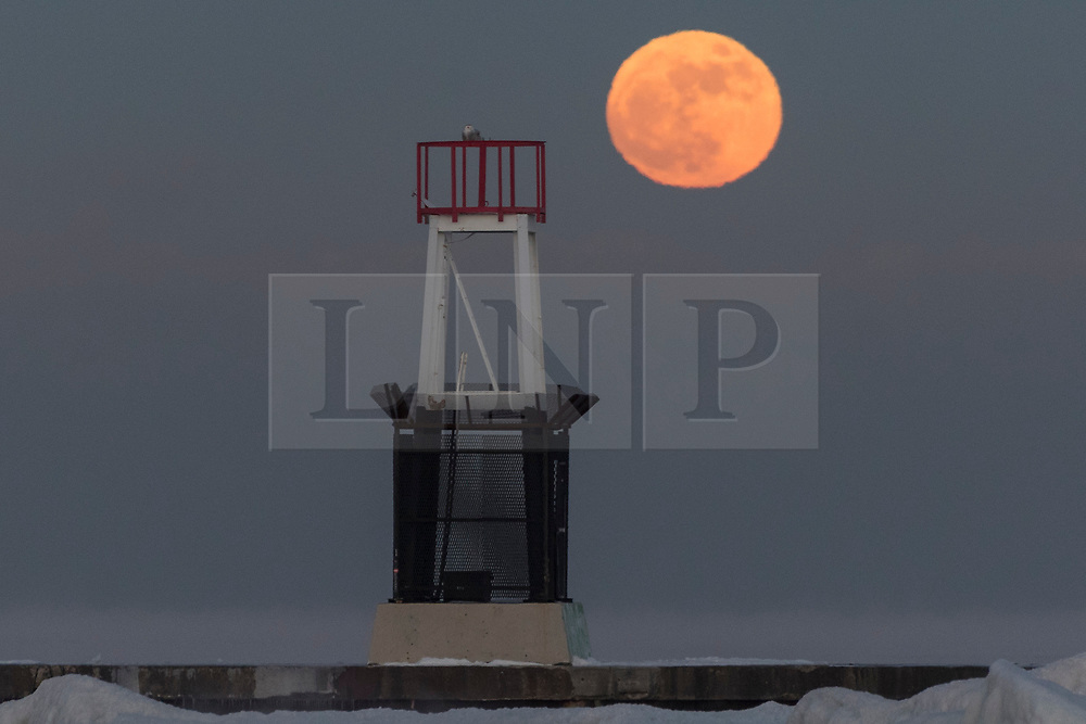 © Licensed to London News Pictures. 01/01/2018. CHICAGO, USA. A snowy owl sits atop the beacon on the jetty at North Avenue beach as the supermoon rises on New Year's Day.  The moon is at its closest point, the perigee, to Earth during its monthly orbit and appears 30% brighter and 14% larger.  January 2018 sees a supermoon known as a 'wolf moon' on 1 January and a 'blue moon' on 31 January.  Photo credit: Stephen Chung/LNP