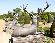 Deer stags sculpture terrace garden Bowood House and gardens, Calne, Wiltshire, England, UK