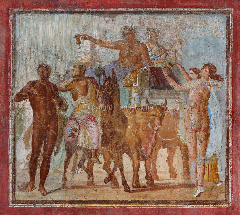 Triumph of Bacchus, fresco, painted in the Third Pompeiian style, in the tablinum of the Casa di Marco Lucrezio Fronto, in the Parco Archeologico di Pompei, or Archaeological Park of Pompeii, Campania, Italy. Pompeii was a Roman city which was buried in ash after the eruption of Vesuvius in 79 AD. The site is listed as a UNESCO World Heritage Site. Picture by Manuel Cohen