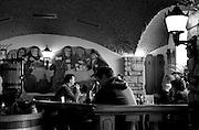 Berlin, GERMANY, General Views, Traditional Resturant,  Potsdam ,  Sunday - 18/01/2009 {Mandatory Credit/Peter Spurrier] Street Photos