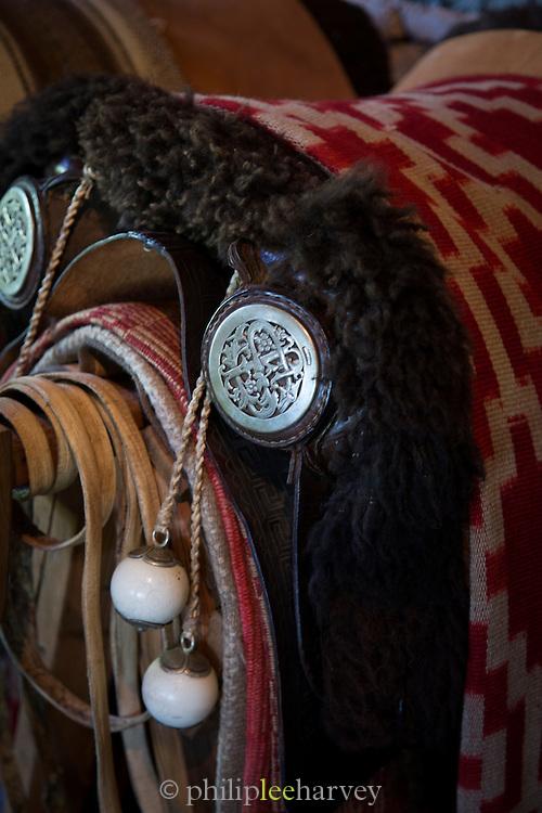 Detail of saddle, Estancia La Bamba De Areco, Pampas, Argentina, South America
