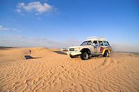 Dubaï Emirate, Desert, United Arab Emirates