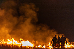 Firemen using leaf blower to control fire by blowing it into already blackened areas during a controlled night burn on the Daphne Prairie, a remnant of the Blackland Prairie, Mount Vernon, Texas, USA.
