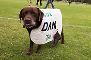 """A dog wearing a """"Give Dan the Boot"""" coat during the Sack Daniel Andrews Protest in Fawkner Park. Parts of the community are looking to hold the Victorian Premier accountable for the failings of his government that led to more than 800 deaths during the Coronavirus crisis. Victoria has recorded 36 days Covid free as pressure mounts on the Premier Daniel Andrews to relax all remaining restrictions. (Photo by Michael Currie/Speed Media)"""