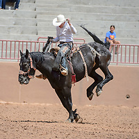 Bronc rider Creighton Curley rode Black Bart for a score of 71 during the Gallup Inter-Tribal Ceremonial Rodeo at Red Rock Park Friday.
