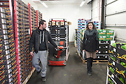 """Cofounder of Freegan Pony Sandrine Ruiz getting donations of unsold food that would most likely be discarded, from the Paris Rungis vegetable market<br /><br />The Freegan Pony is an alternative restaurant housed in a squat. It was founded in 2015 by Aladdin Charni with three other collaborators. The restaurant specialises in cheap vegetarian cuisine, serving meals which guests reserve a place through a Facebook group, paying €2 a meal. The restaurant meals contain unsold and donated food, collected from wholesellers at the Paris Rungis vegetable market. The Freegan Pony is located at the Porte de la Vilette on the outskirts of Paris, at the entrance to the peripherique outer circle motorway.<br /><br />Freegans are people who employ alternative strategies for living based on limited participation in the conventional economy and minimal consumption of resources. Freeganism is the practice of reclaiming and eating food that has been discarded. People who attempt to live an ethical lifestyle by reusing trash and rubbish thrown away by others.<br /><br />Freeganism is an ill-defined activity and is a subset of the larger anti-capitalist and environmental protest movements. It embraces alternative, anti-consumerist lifestyles. Freegan practices also include co-operative living, squatting and """"freecyling"""", or matching things that people want to get rid of with things other people need"""