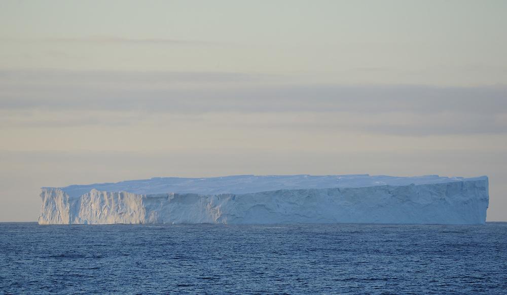 Tabular iceberg  in the Southern Ocean near the South Orkney Islands at sunset. South Orkney Islands. 27Feb16