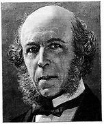 Herbert Spencer (1820-1903) English philosopher and writer on science. Social Darwinism. Wood engraving, London, 1897
