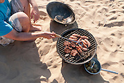 Beach barbecue (with model release)