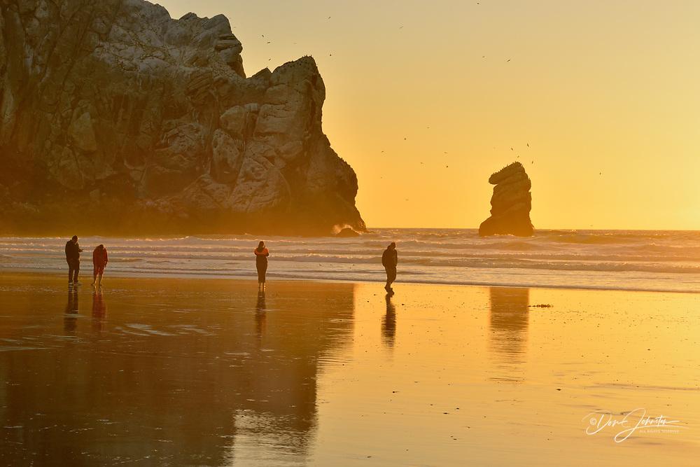 Beachcombers enjoying the evening sun on Morro Bay beach, Morro Bay, California, USA