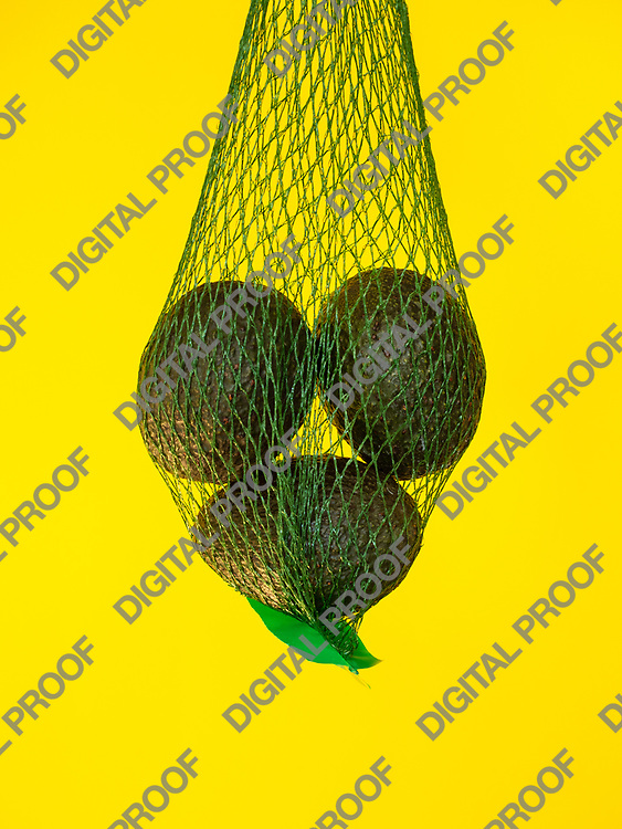 Avocados in a green net  isolated and suspended on air with a yellow background in studio