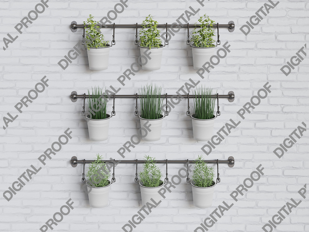 Kitchen Herbs and home gardening plants in a white wall of bricks, healthy living minimalism concept - 3D Rendering Concept