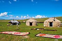 Kirghizistan, province de Naryn, le lac de Song Kol, campements de yourte des nomades Kirghiz, tapis de feutre // Kyrgyzstan, Naryn province, Song Kol lake, Kirghiz nomad's yurt camp, felt carpet