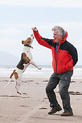 Image of a beagle jumping next to a man.